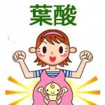 妊婦と葉酸